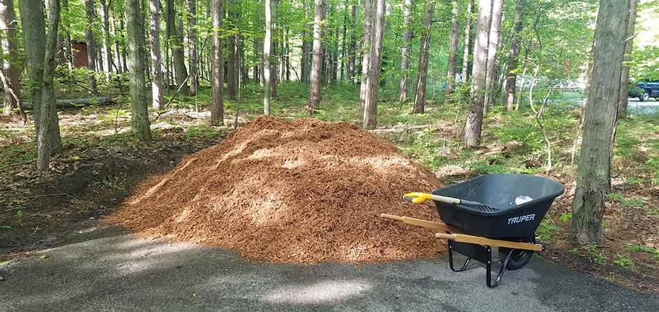 Cedar mulch pile about to be installed in Bay City, MI.